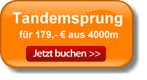 Angebot Button hell neu